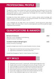 cv format artist sample document resume cv format artist how to write an artists cv when you dont have much or 29