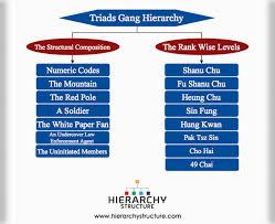 Triads Gang Hierarchy Hierarchystructure Com