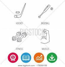 Baseball Ice Hockey Vector Photo Free Trial Bigstock