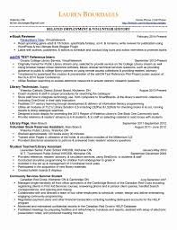 Information Technology Resumemple Specialist Cv Example Entry Level