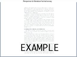 Response To Literature Essay Example 8th Grade Format Homework