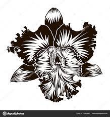 цветочный элемент орхидея цветок силуэт Isoleted на белом для