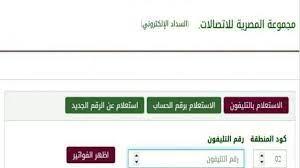 رابط شركة المصرية للاتصالات.. خطوات تسديد فاتورة التليفون الأرضي
