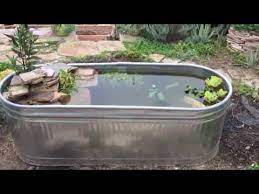 building a mini pond using a stock tank