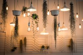 lighting for houseplants. Clean T.O A Guide To Indoor Plants In Small Spaces Picture Of Hanging Lighting For Houseplants