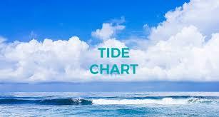 Tide Chart 2018 Costa Rica Tide Chart November 2018 The Howler Magazine