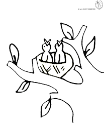 Disegno Di Nido Di Uccelli Da Colorare Per Bambini Con Uccellino