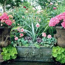 253 Best ✽ Cool Plants Images On Pinterest  Flower Gardening Bhg Container Garden Plans