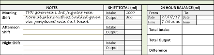 Urine Input Output Chart The Intake Output Chart Health Care Service Delivery