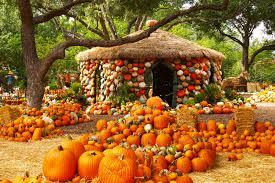 autumn at the arboretum dallas arboretum and botanical garden dallas texas usa