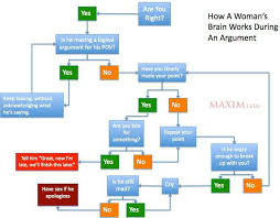 How A Womans Brain Works During An Argument Flow Chart