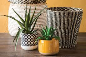 Best <b>artificial plants</b> for the home 2019 | London Evening Standard