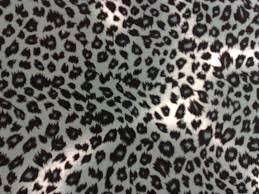 Animal Prints Pictures Of Animal Prints 5746