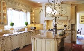 cute kitchen ideas. Kitchen Decor Ideas Themes Luxury Cute Decorating Throughout O