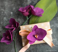 Paper Orchid Flower Double Sided Sangria Aubergine Cherry Raspberry Lia Griffith