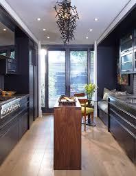 modern kitchen. Dark Contemporary Kitchen Modern Kitchen