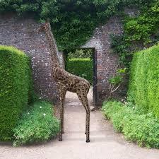 garden sculpture. Large Metal Giraffe Garden Sculpture R