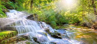 beautiful background images nature.  Beautiful Morning Beautiful Forest Stream Waterfall Poster Background Simple  Atmosphere Creek Background Image With Images Nature