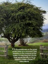 Country Life Quotes And Sayings Beauteous Country Quotes About Life So Inspiring