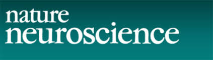 Resultat d'imatges de revista Nature neurociencia