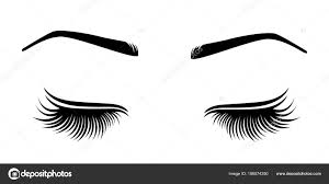 Vector illustration of lashes and brow ...