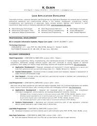 Entry Level Programmer Analyst Resume Finance Banking Personnel ...