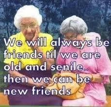 Image result for funny friendship images with quotes