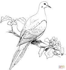 Coloring Pages Free Printable Birds Coloring Pages To Print Bird