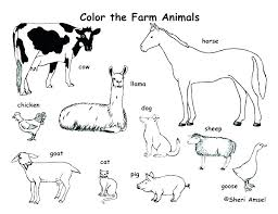 Farm Animals To Color