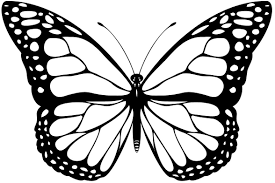 Butterfly Patterns Printable Custom Inspiration