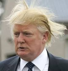 Image result for trump hat wind