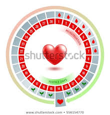 17 Circular Flow Chart With Shiny Red Heart Average Number