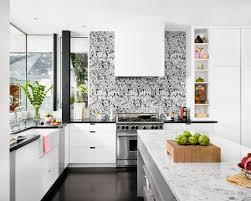 white and black kitchen backsplashes.  Kitchen Modern Kitchen With Graphic BlackandWhite Backsplash With White And Black Backsplashes