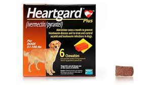 Image result for heartgard images
