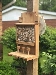 home plans ideas 2019 for your home fabulous squirrel feeder plans with squirrel feeder plans