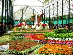 flower gardens pictures. More Than Just A Flower Garden, This Place Is Botanical Garden Spread Lavishly Across 40 Acres Of Land. In The Whole South Asia Region, Gardens Pictures
