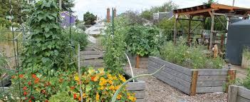 fred meyer garden center.  Fred Foster Powell Community Garden With Fred Meyer Garden Center