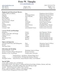 Music Resume Template Magnificent Music Resume Template Examples Paper Bestuniversities