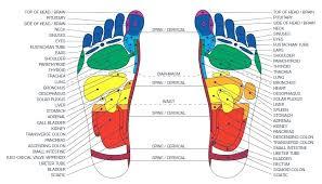 Reflexology Lotus Leela Healing