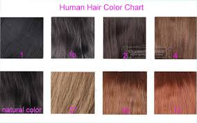 Human Hair Color Chart For Lace Closure Hair Pieces Human