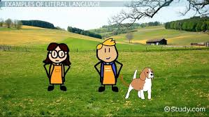 literal language literal language definition examples video lesson