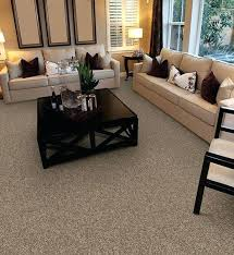 pet friendly rugs valentine from carpet express featuring pet protect pet friendly indoor rugs best pet pet friendly rugs
