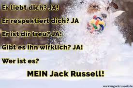 Jack Russell Zitate Und Sprüche Jackrussellde