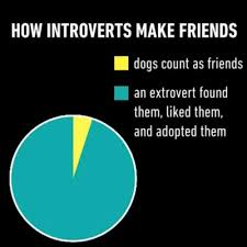 Introvert Chart Introvert Pie Tumblr