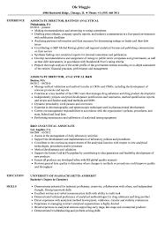 Analytical Skills Resumes Analytical Associate Resume Samples Velvet Jobs