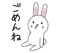 Image result for apologize to a rabbit