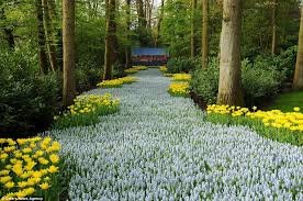 Small Picture Beautiful Flower Gardens Of The World decorating clear