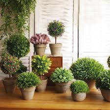 Aliexpresscom Buy High imitation potted indoor plants