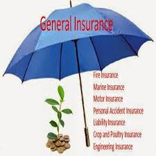 The General Insurance Quotes Awesome The General Insurance Quote Delectable The General Insurance Quote