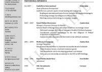 Professional Cv Format Doc Modern Resume Template Word Info. Doc ...